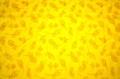 Floret lemon poplin (SOLD OUT)